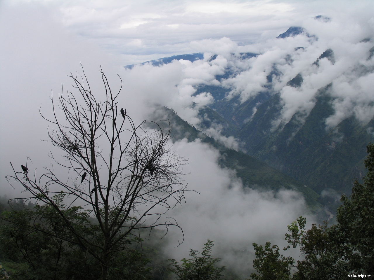 Befogged Himalaya mountains view in Sarahan