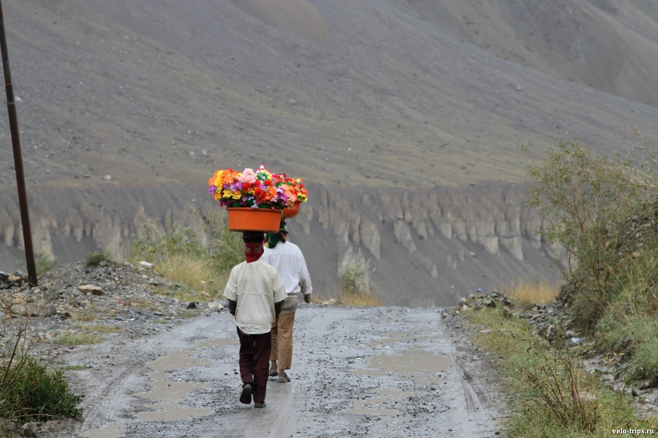 Himalaya people with artifical flowers in basket on the road along Spiti