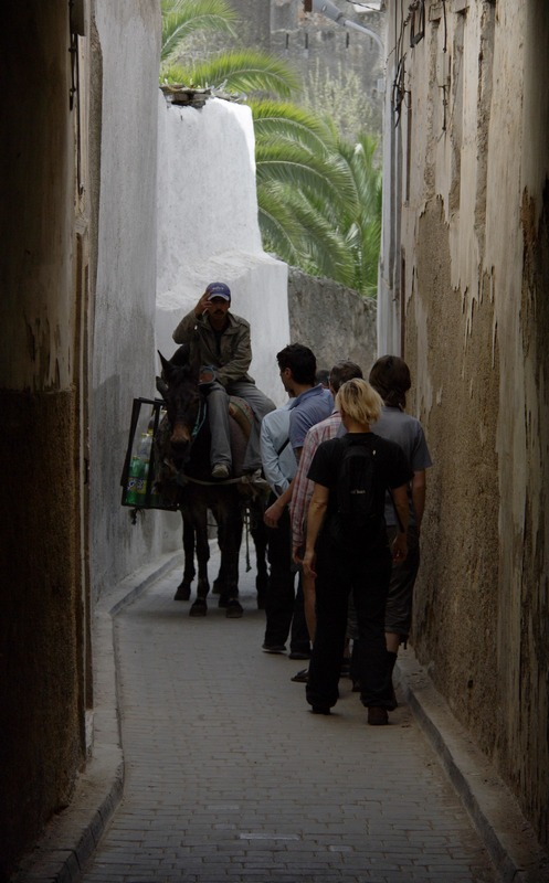 Morocco, Fes. Donkey and tourists on the narrow old town's streets