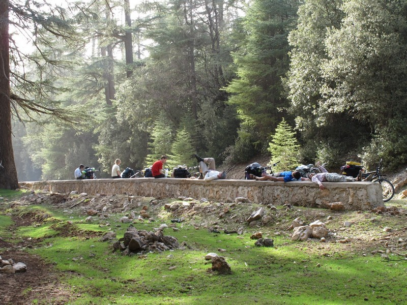 Morocco. Bicycle group rests in the forest