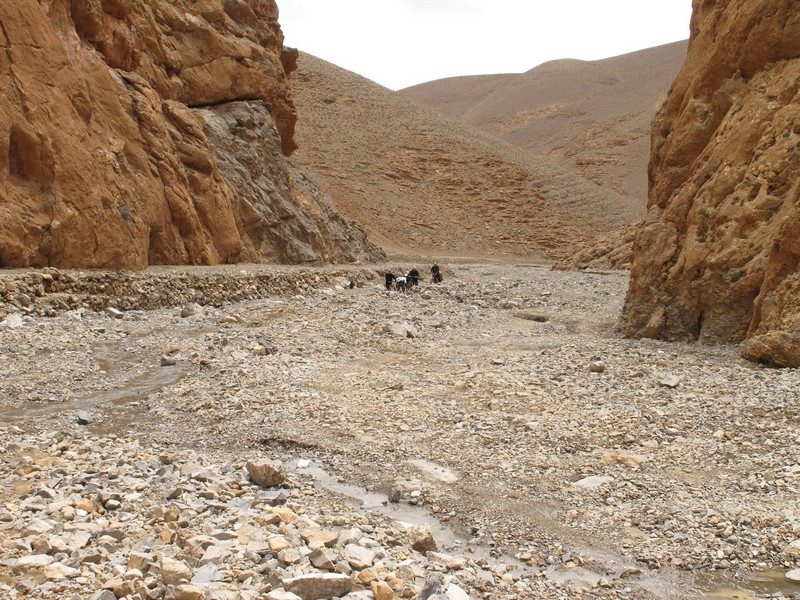 Morocco, Tamtetoucht. Dry river stream canal