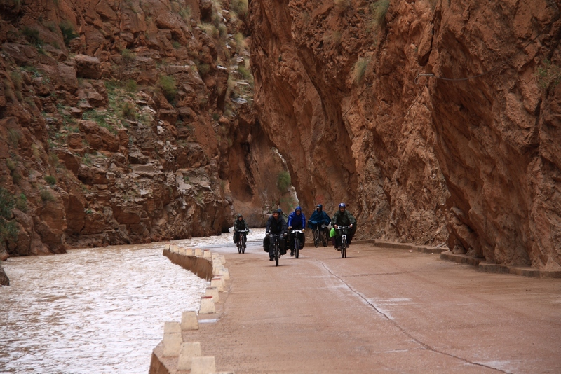 Morocco, Dades gorge. Bicycle group on narrow road near river