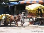День 2. Дели(Delhi) - Шимла(Shimla)